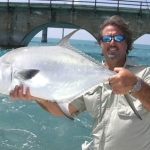 Some very nice Permit off the 7 Mile Bridge