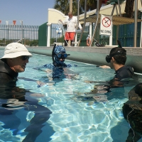 Static apnea exercises in the pool